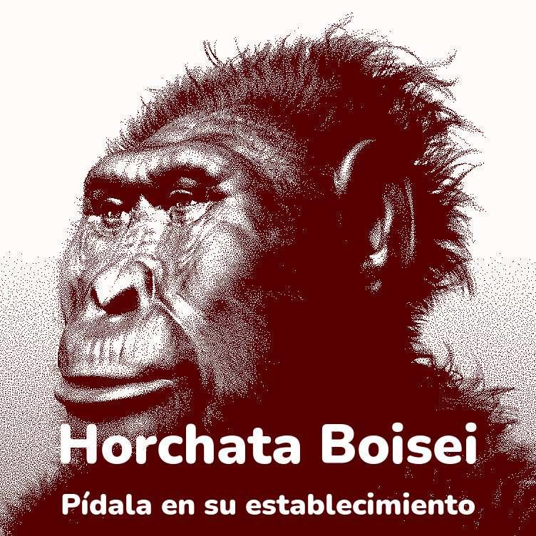 Publicitat Orxata Boisei